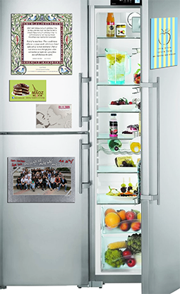 fridge basic1