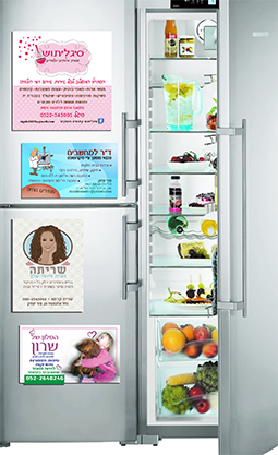 fridge basic2