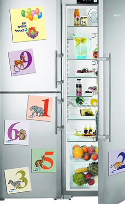 fridge basic3